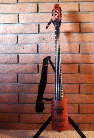 NS Design CR5 Omni Bass BassCello Fretted